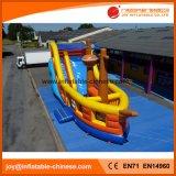 Aufblasbares Piraten-Boot für Vergnügungspark (T6-616)