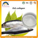 Protéine Oligopeptide de collagène de poissons pour le produit de beauté
