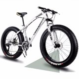 26 '' Fat Tire Bike with Ce Certificate (ly-a-18)