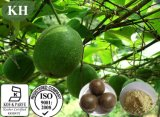 Extracto el 80% Mogrosides, el 25% Mogroside V. de Luo Han Guo