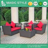 L'insieme del sofà del rattan con il sofà del giardino dell'ammortizzatore ha impostato (stile magico)