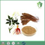 중국 전통적인 나물 Foti 추출 글루코사이드 2%