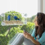 Alimentador personalizado para pájaros de ventana de acrílico con ventosas fuertes