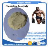 Petróleo esteróide semiacabado Trenbolone Enanthate 100mg (parabolan) para o ganho do músculo