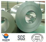 Coiled Galvanized Steel Coils / Color Coated Steel Coil