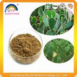 Pflanzenauszug-Kaktus-Auszug-Puder-Gewicht-Verlust