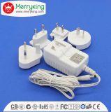 12V de verwisselbare Adapter van de Macht met FCC UL Ce PSE SAA