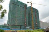La construcción de edificios cuerda de alambre Topkit Grúa torre