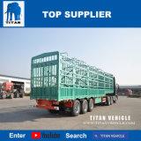 Titan-Ware-Haus-Sattelschlepper mit Dropside für Verkauf