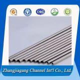 20mm Diameter Roestvrij staal Tube voor Hot Sale