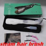 Beste Qualitätskeramischer Dampf-Haar-Strecker-Pinsel