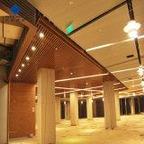 Ventes en gros le revêtement absorbant le son du clip de faux plafond en aluminium perforé