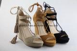 Het Schoeisel van de Teen van het Piepgeluid van het Ontwerp van de wig Dame Shoes Fashion Sandal