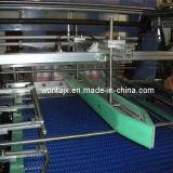 Linear due Spingere PE film di avvolgimento automatico (WD-350B)