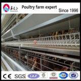 Клетка триперсток Китая автоматическая конструкция дома клетки/птицефермы цыпленка яичка 6 слоев
