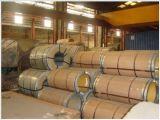 Bobines galvanisées à chaud d'acier/feuille avec la qualité