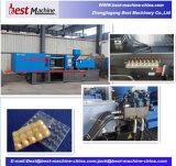 A alta qualidade da caixa de ovo de plástico máquina de injeção