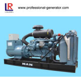 100kw de Generator van de Macht van de Gasvorming van de biomassa met de Motor van de Mens