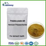 Probiotics Hericium of Polysaccharide Mushroom plans Extract Nutraceuticals