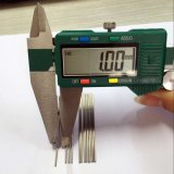 SS304 1.2mm het Haarvat van het Roestvrij staal van de Diameter