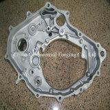 OEM OEM van de Delen van het Afgietsel van de Matrijs van het Aluminium met ISO/Ts16949