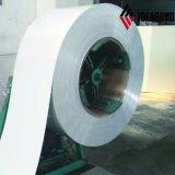 Китайский хорошего качества Pre-Paint алюминиевого завода-изготовителя катушки