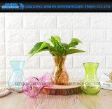 Vaso floreale colorato del mestiere di vetro degli articoli fornenti della pianta acquatica