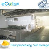 Armazenamento frio do grande tamanho para a trasformação de frutos dos vegetais, armazenamento de mantimento fresco, e centro de distribuição da logística