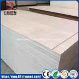 Contre-plaqué commercial de faisceau de bois dur/contre-plaqué Shuttering pour les meubles et la construction