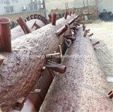 鋼鉄によって電流を通される人工的なココナッツタワー
