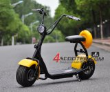 Scooter eléctrico de 500W Scooter eléctrico de 2 ruedas Harley Scooter