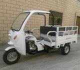Cabin를 가진 최신 중국 250cc Gasoline 3 Wheel Motorcycle Cargo Trike Three Wheel Motorcycle
