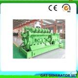 El poder pequeño generador de gas del motor de biogás