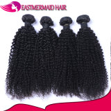 Do cabelo malaio do Virgin do cabelo humano de 100% onda Curly Kinky