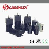 GS 40W 220V определяют трехфазный высокий мотор индукции вращающего момента зацепленный AC