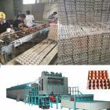 계란 쟁반 음식 상자를 위한 기계를 형성하는 제지용 펄프 진공