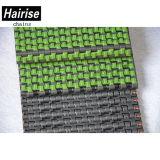De plastic Mobiele Antislip Modulaire Riem van de Transportband voor Drank (Har2120)