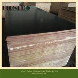 La madera contrachapada hecha frente película de Brown con dos veces presionó