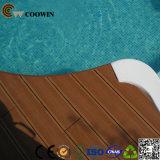 Plancher imperméable à l'eau de jardin de l'Europe à l'extérieur