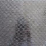 Étage de marbre de film publicitaire de PVC de plancher de vinyle de modèle moderne