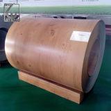 SGCC Z60 Prepainted гальванизированная стальная катушка для здания PPGI