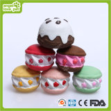 Brinquedo Pet Toy do bolo do vinil (HN-PT672)