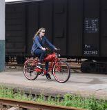 26 Zoll-fetter Gummireifen-elektrischer Fahrrad-Schnee-Strand-Kreuzer-elektrisches Fahrrad