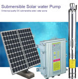 Versenkbare Solarwasser-Pumpe, China hochwertige Gleichstrom-Solarwasser-Pumpe