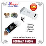 Transdutor de ultra-sónico veterinários sem fio, Wireless sonda ultrasónica convexo, scanner de ultra-sonografia Veterinária, os veterinários USG, Máquina de digitalização de ultra-sons