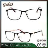 Het volledige Frame van het Metaal van Eyewear van de Oogglazen van de Manier van het Frame Nieuwe Optische