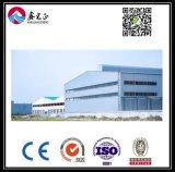 Подгонянный высоким качеством пакгауз стальной структуры (BYSS031)