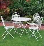 En581テストが付いている錬鉄の庭の表そして椅子