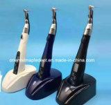 치과 근관 처리 무선 LED 내향 모터