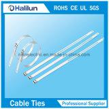 スライバカラーステンレス鋼の梯子の単一のトゲロックケーブルのタイのジッパーのタイ